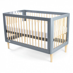 Babyhood Riya 5 in 1 Cot Grey Display