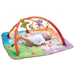 Tiny Love Gymini Move and Play Gym